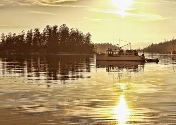 Pender Island in Pictures
