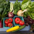 Summer CSA Veggie Box